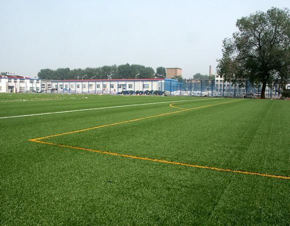 人造草坪足球场地维护使用技巧