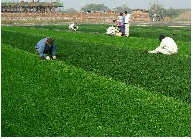适当维护和保养人造草皮