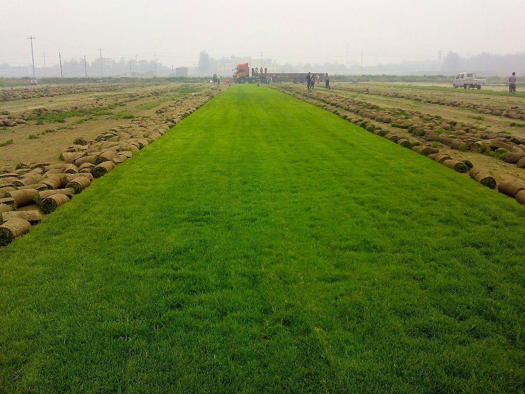 人造草坪门垫地毯