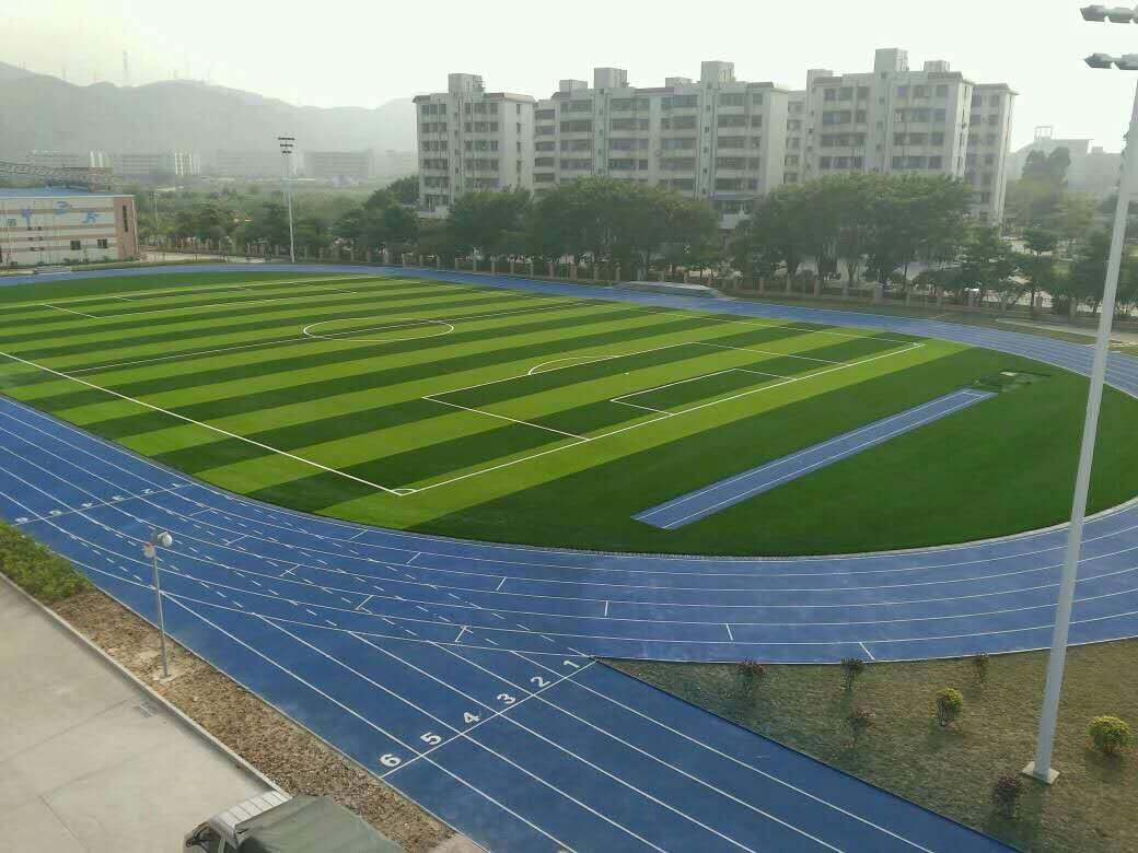 人造草坪增长