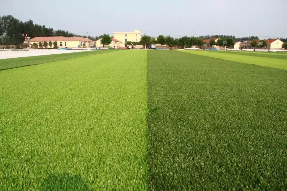 人造草坪更具优势