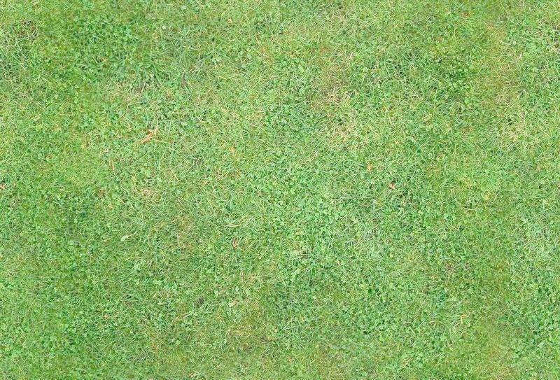 草坪养护管理