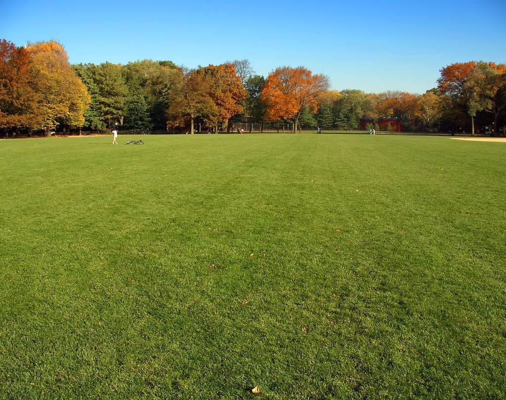 草坪的施肥