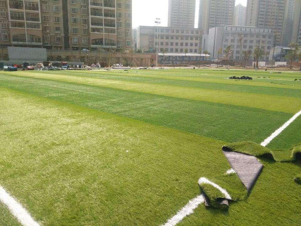 人造草坪施工