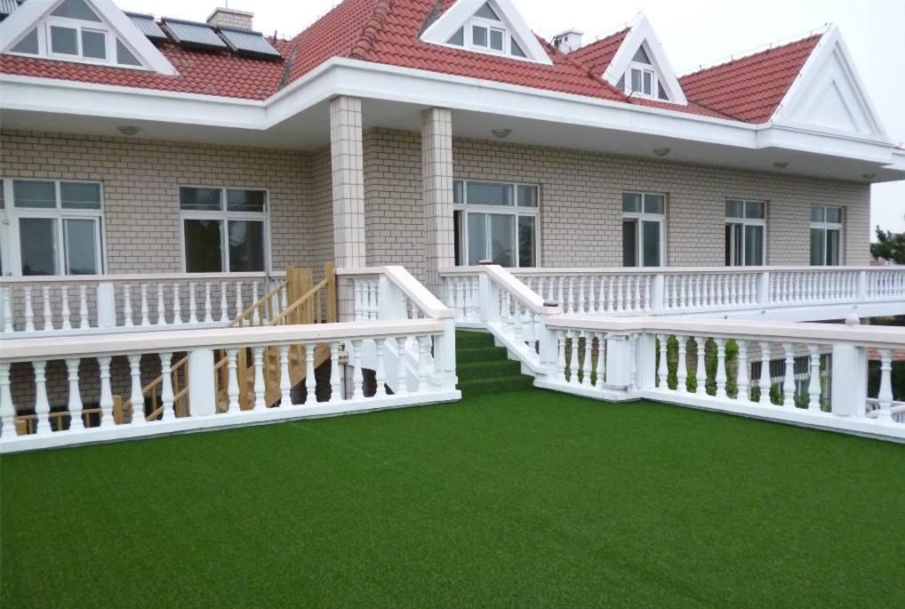 植物屋顶绿化工作