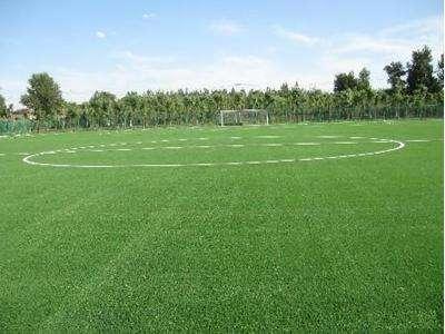 人造草坪场地性能