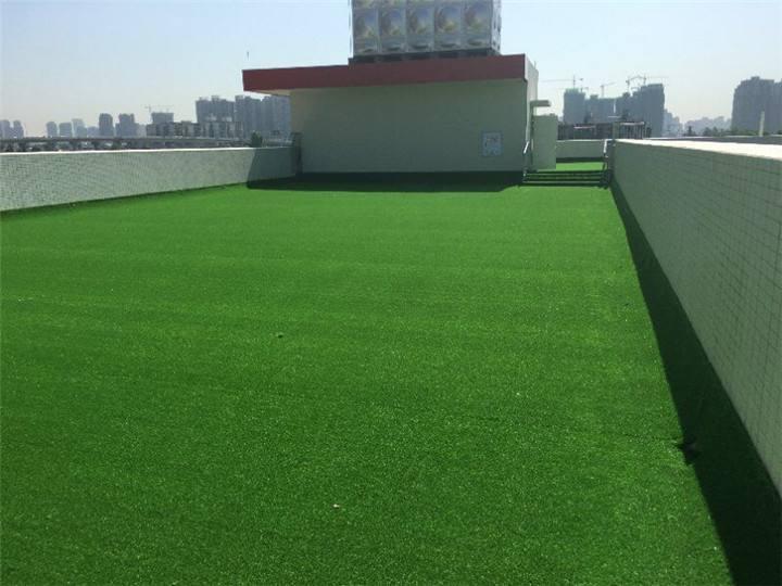 不充沙人造草坪