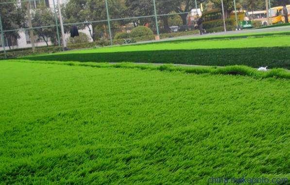 人造草坪施工前期