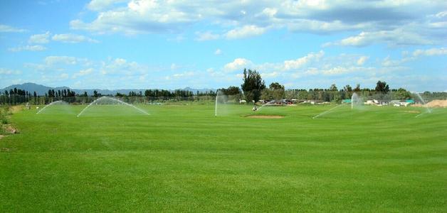 雨水天对草坪种植有什么影响呢?